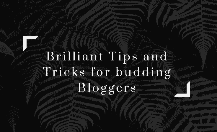Brilliant Tips and Tricks for budding bloggers
